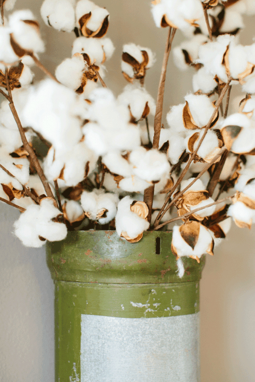 Decorating With Cotton Rachel Rossi